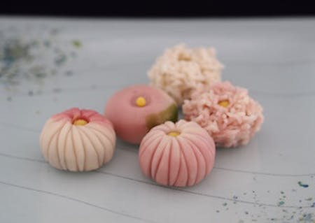 Wagashi Classes : Kiku (Chrysanthemum) from Nerikiri dough & Japanese tea