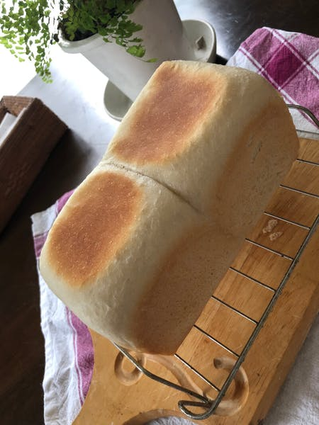 Natural yeast wheat bread