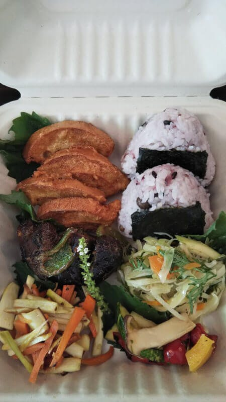 Organic Vegan Bento Box for Hiking the Mt. Takao
