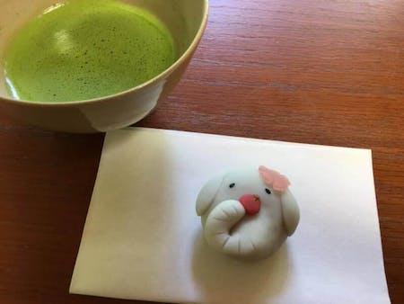 Experience Matcha ~Japanese tea ceremony~